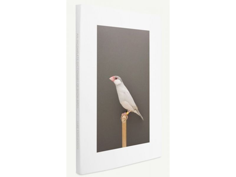 An Incomplete Dictionary of Show Birds,by Luke Stephenson