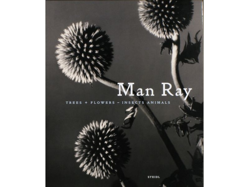 Man Ray trees  + flowers - Insects Animals,by John P. Jacob / Man Ray